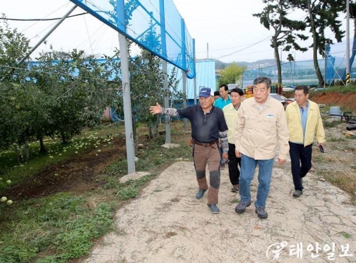 태풍 피해 농가 인력지원 (0).JPG