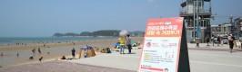 태안군, 해수욕장 현장 대응반 가동...코로나19 확산방지에 총력