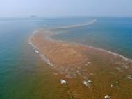 [포토] 태안의 몰디브 '장안사퇴'의 이국적 자태